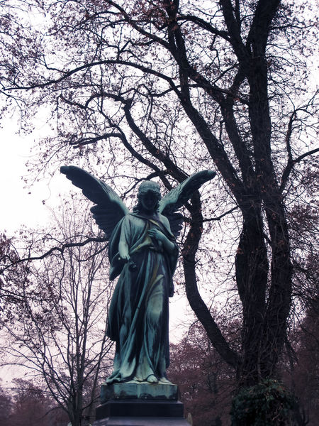 Bare Tree Branch Cemitery Day Death Female Likeness Human Representation Low Angle View No People Nordfriedhof Outdoors Sculpture Sky Statue Travel Destinations Tree