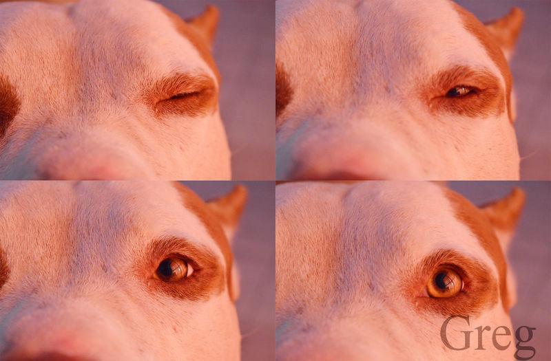 greg Luz Deixa_rolar EyeEm Selects