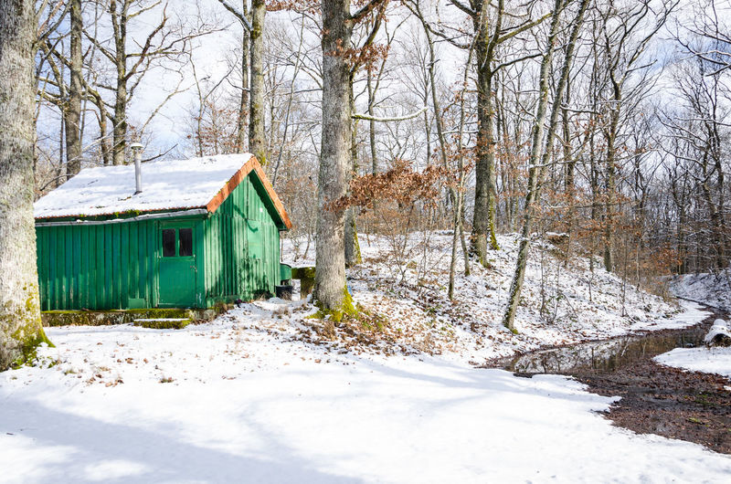 Snow Winter Cold Temperature Tree Architecture Nature Land No People Built Structure Building Exterior Day Bare Tree Building Forest Outdoors Plant Field House Abandoned Hut Woods Riverside Frozen Cabin Wooden Country House Tree Trunk Cold Snow Covered Snowcapped