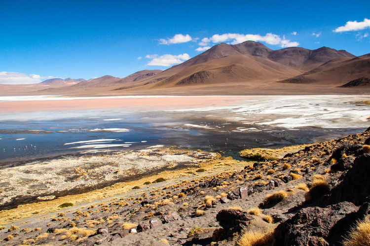 Uyuni Arid Climate Beauty In Nature Blue Climate Cloud - Sky Day Environment Lake Land Landscape Mountain Mountain Range Nature No People Outdoors Salt Flat Scenics - Nature Sky Sunlight Tranquil Scene Tranquility Water