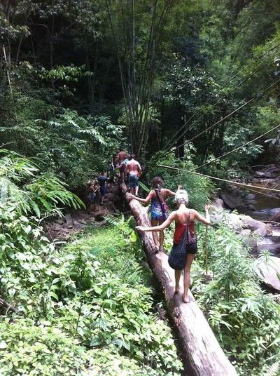 Trekking rafting waterfal ride an elephabt round the jungle trip one day email turbobooking7@gmail.com or 0888077944 24 hr.service reservatio.