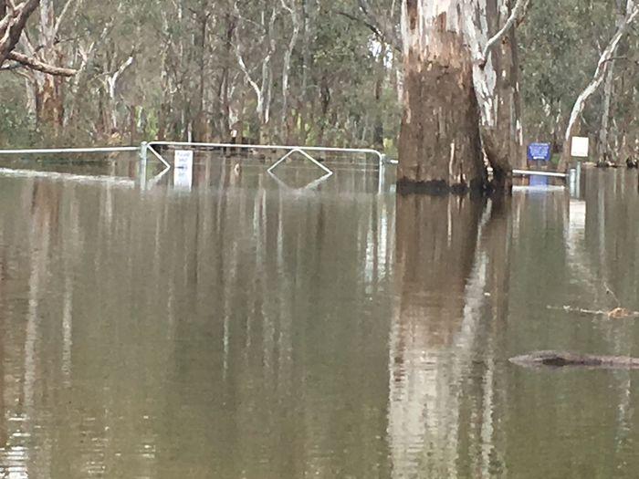 Water floods