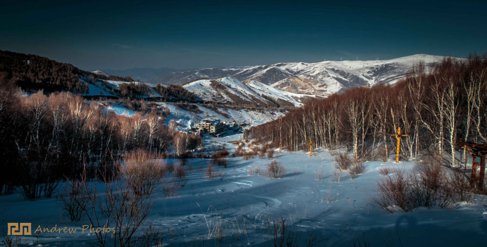 Beauty In Nature Landscape_photography Mountain Snow Trees Winter