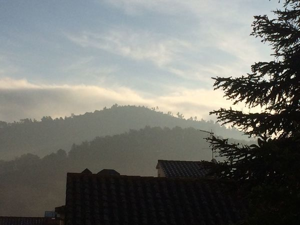 Nature Catalunyalove