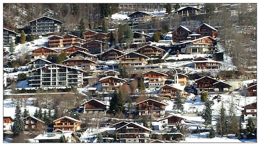 The Architect - 2016 EyeEm Awards Alps Close-up Morzine-Avoriaz