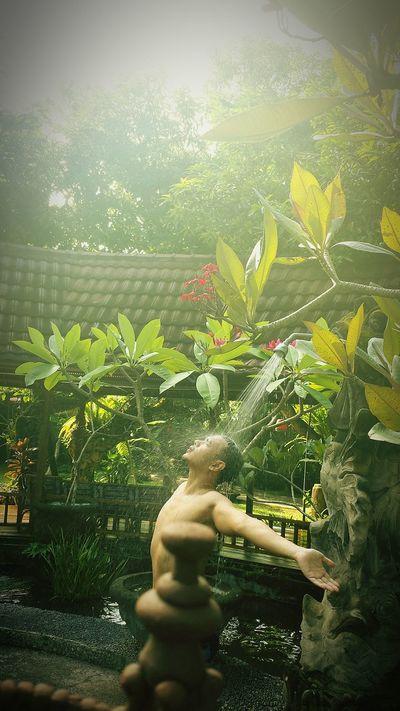 Close-up Bathing Bali Sunshine Sunrise Morning Morningsun Day Tree Plant Outdoor