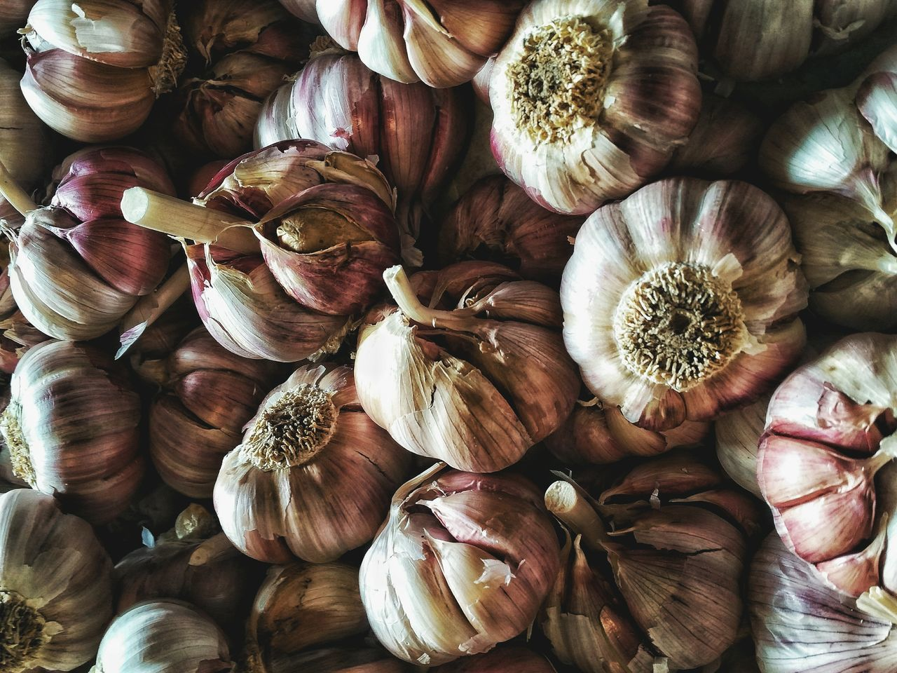 food and drink, food, freshness, wellbeing, spice, ingredient, still life, healthy eating, full frame, garlic, no people, close-up, backgrounds, large group of objects, garlic bulb, indoors, abundance, raw food, directly above, vegetable