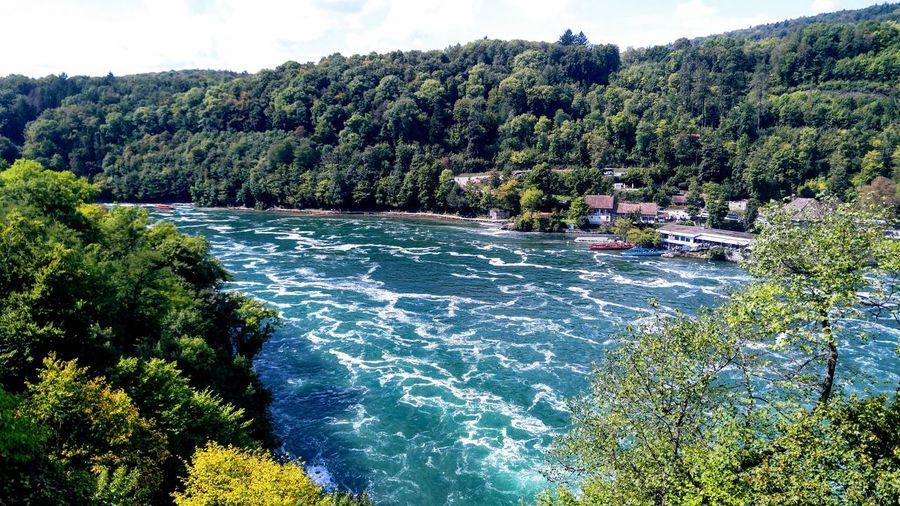 Rhine Falls,
