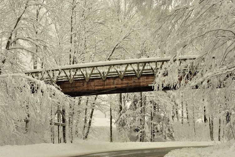 Beauty In Nature Michigan Michigan Avenue No People Snow Snow Covered White Winter Wonderland Bridge Baby Its Cold Outside ❄