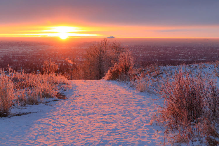 Scenic view of snow covered field against sky during sunset