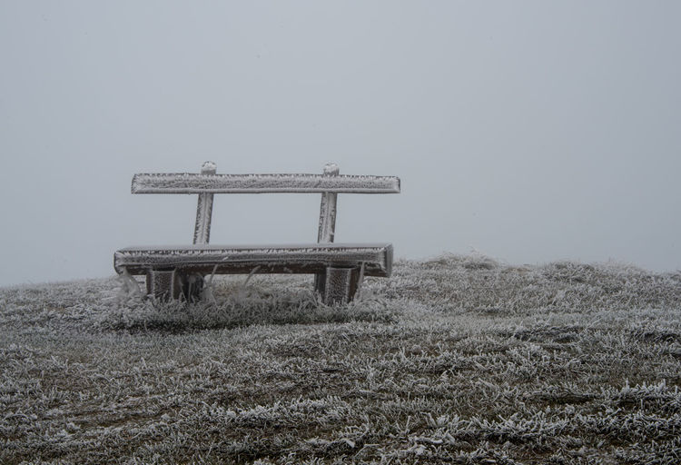 Frozen bench on grass