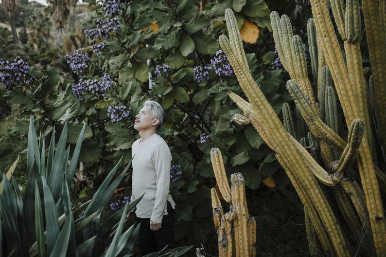 Full length of child standing on flowering tree