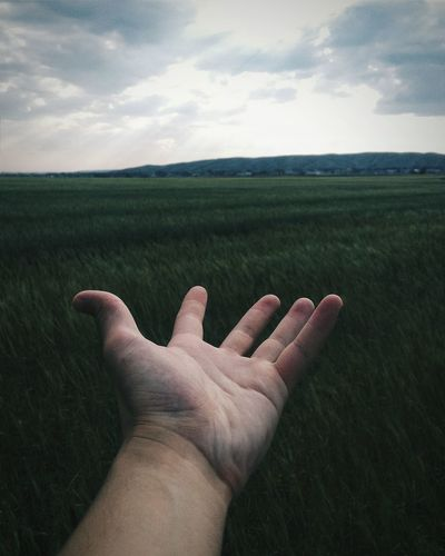 Cropped Image Of Hand Against Grassy Field