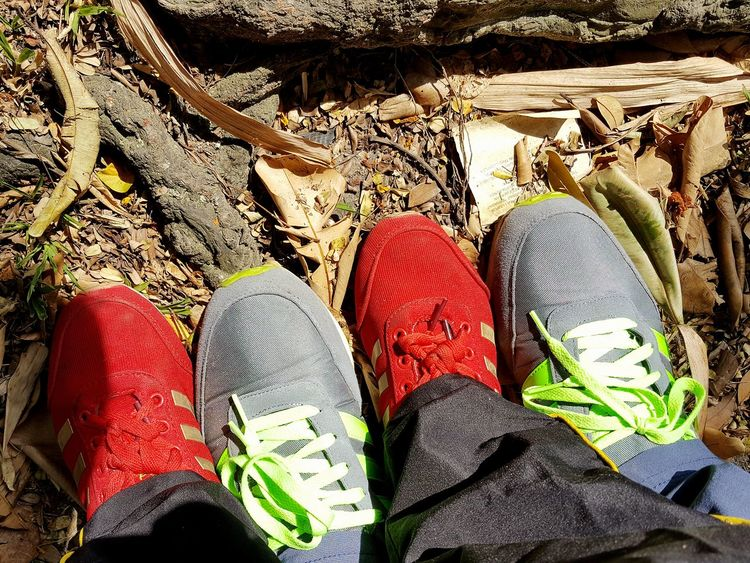 Tasik Titiwangsa Malaysia High Angle View Day Shoe Human Leg Outdoors Sunlight Nature Low Section Close-up One Person People
