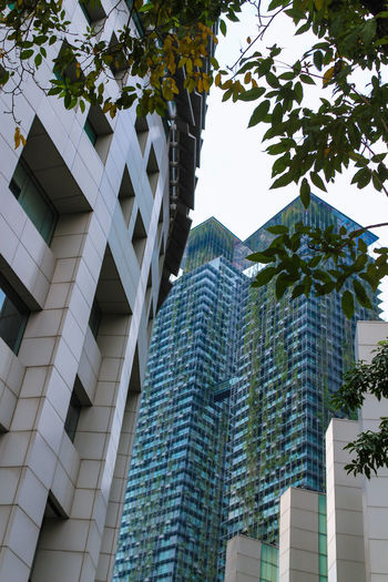 ASIA Architecture Building Exterior Built Structure City Day Growth Leaves Low Angle View Malaysia Modern No People Outdoors Sky Skyscraper Tree Vertical Forest Window