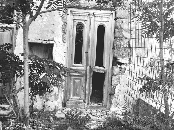 Door Entrance Day Outdoors Building Exterior Plant Built Structure No People Architecture Doorway Growth Entry Nature Open Door