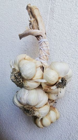 Close-up of garlic bulbs hanging on wall