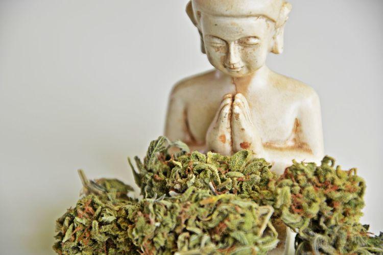 Ganja Grass Weed Buda Relax Time  Ganja Love