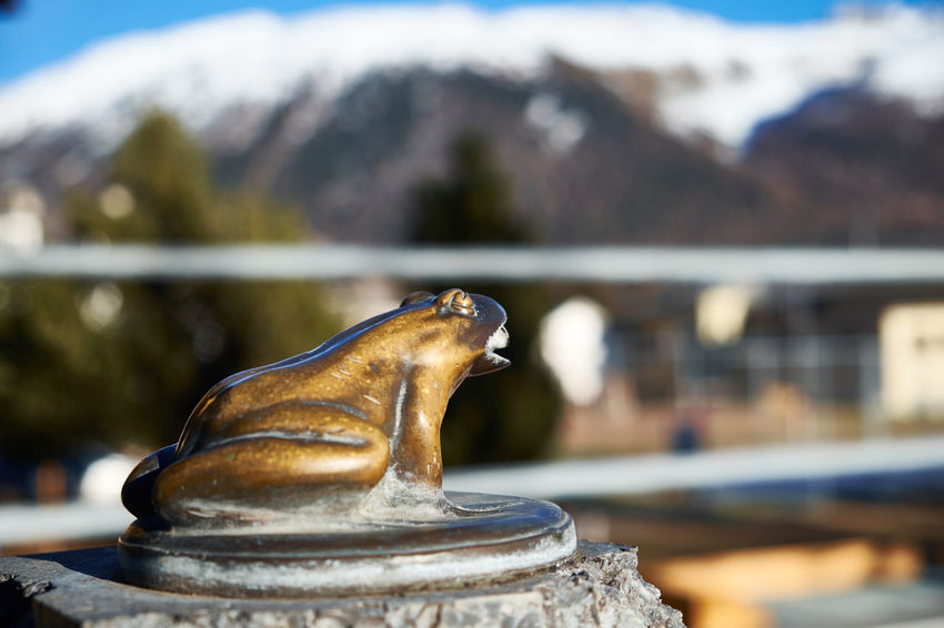 Close-up No People Outdoors Statue Day Frog Animal Themes Fountain Fountains in Celerina Switzerland Switzerland. Eyeem Switzerland Swiss Eyem Galery Engadin Engadina Engadine Switzerland