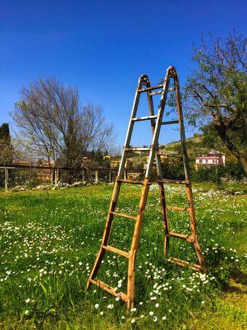 Spring Primavera Italia Nature EyeEm Gallery EyeEm Best Shots Landscape Eye4photography  Sky Sun Light IPhoneography