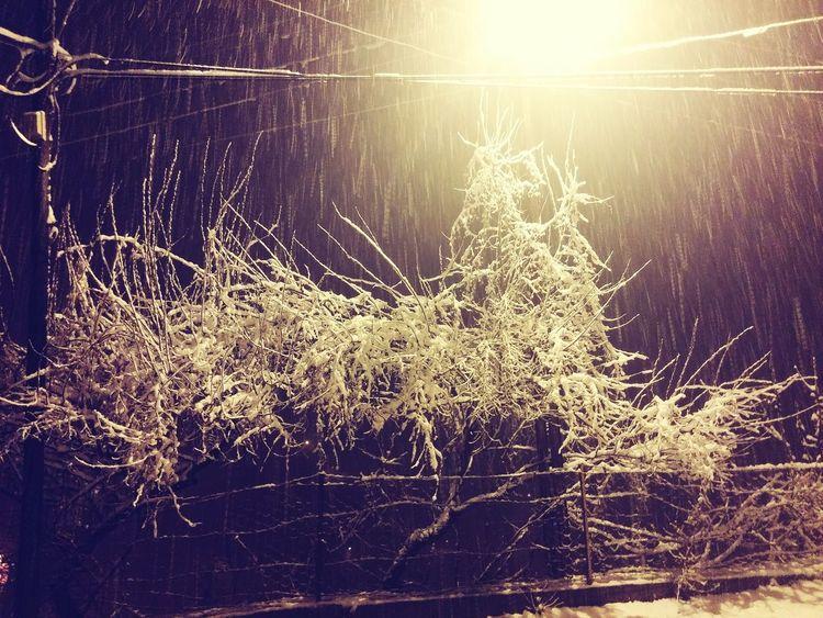 Snow ❄ Eyem Best Shots Night Winter Sektör Yapım Hadjin Kış Nature Adana Saimbeyli