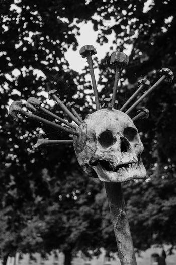 Black & White Nails Schloß Gottorf Art Black And White Blackandwhite Close-up Focus On Foreground No People Skeleton Skull