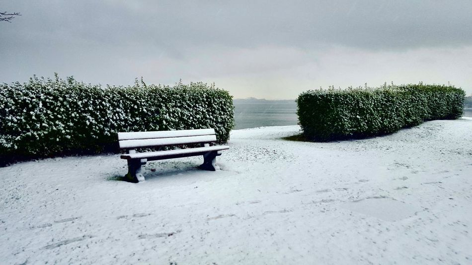 Bench in snow Bench Snow Winter Shite Foggy Cloudy Gray Sitting Contemplating Peaceful Scotland Nature Day No People Outdoors Snow Sky Shades Of Winter