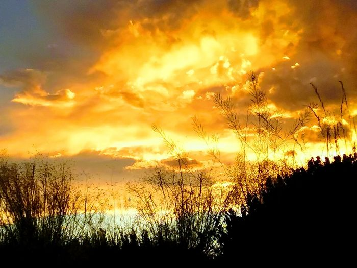 Sunset Nature Beauty In Nature Scenics Cloud - Sky Multi Colored Outdoors Sky Night Sky In Wyoming Is Always Beautiful