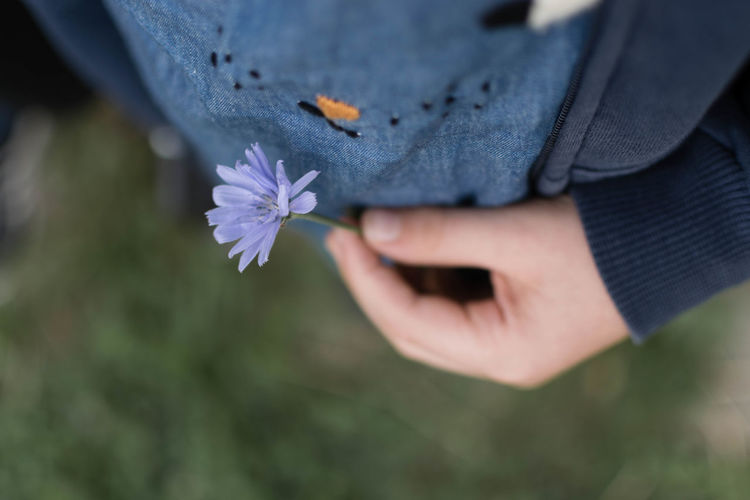 Beauty In Nature Caughtflowerhanded Child Child Holding Flowers Child In Nature Childhood Close-up Flower Flower In Hand Flowers Holding In Bloom Littlethings Nature Person Petal Summer Mood Summertime Dramatic Angles