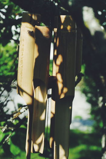 Close-up Day Focus On Foreground Gardeb Garden Garden Photography Hanging Hanging Nature Nature No People Outdoors Summer Summer Views Summertime Tree Tree Wind Wind Chime Wind Chimes Bohemian Boho Bohemian Style
