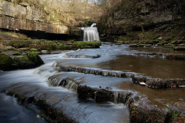 Cauldron Falls Yorkshire Dales Scenics Rock Powerful Nature Cauldron Falls Water Tree River Waterfall Flowing Water Power In Nature Crashing Rushing Force Splashing Falling Water Rapid Flowing Stream - Flowing Water Countryside Landscape