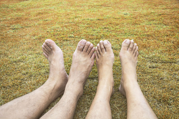 Couple Relax barefoot happy nature lawn on the grass in brown tone Couple Grass Lover barefoot Brown Fingernail Grass Human Foot Human Leg Lawn Leisure Activity Lifestyles Men Nature People Plant Real People Relaxation Togetherness