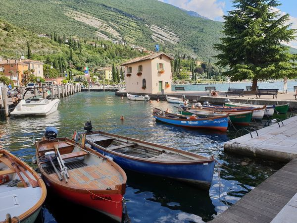 Boats⛵️ Gardasee Italia Architecture Boats Building Building Exterior Built Structure Canal City Day Gardalake Harbor Italy Italy❤️ Mode Of Transportation Moored Mountain Nature Nautical Vessel No People Outdoors Plant Rowboat Sailboat Transportation Travel Tree Water