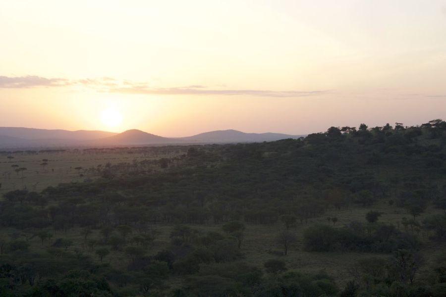 Copy Space Distant Hill Horizon Over Land Mountain Mountain Range Non-urban Scene Serengeti Serengeti National Park Sunrise Sunrise_Collection Sunrise_sunsets_aroundworld Tranquility Landscapes With WhiteWall