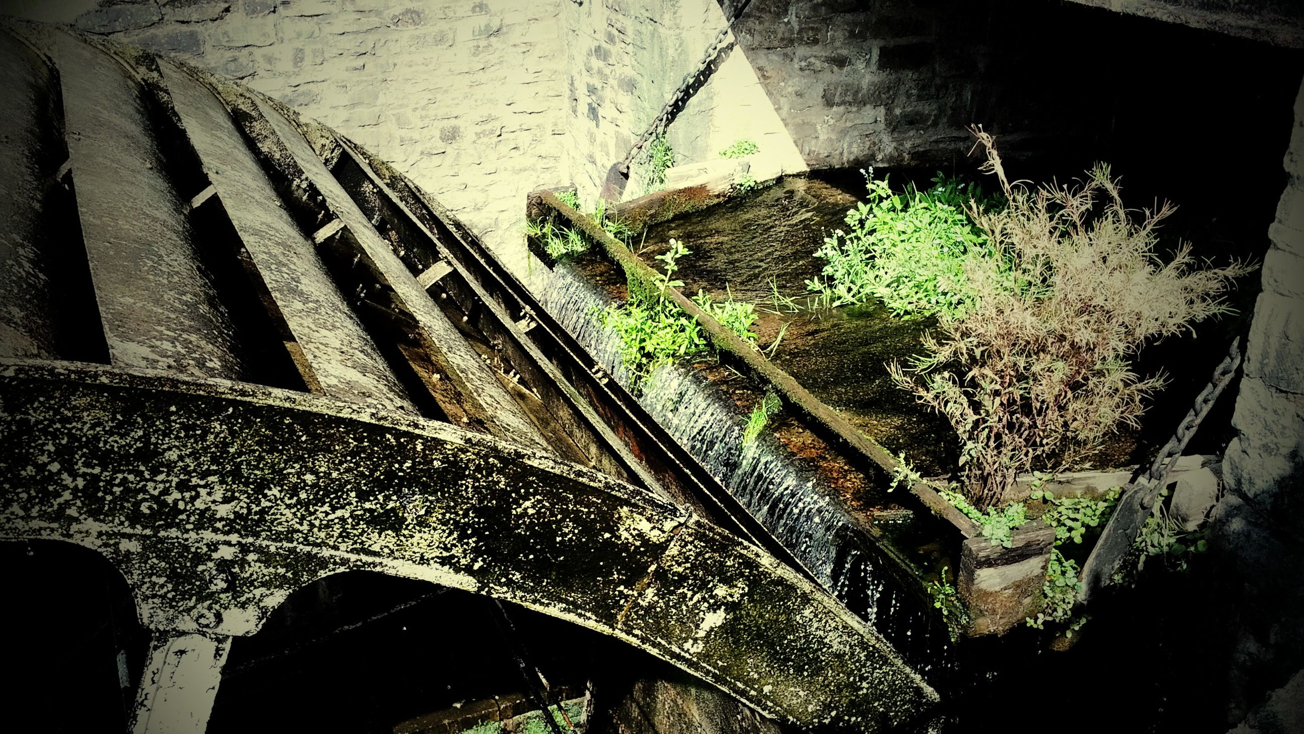 built structure, architecture, growth, plant, transportation, wall - building feature, high angle view, outdoors, sunlight, close-up, day, no people, old, low angle view, nature, building exterior, damaged, abandoned, reflection, water