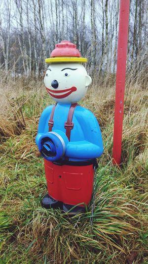 Clown Hydrant Hydrantportrait Hydrant Art Statue Hydrantvalve Art ArtWork Water Grass Green Grass Day Park - Man Made Space Tree Outdoors Field No People