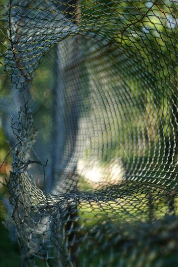 A torn fence beside a sportsfield captured with Takumar 1.4 lens EyeEmNewHere Asahi Green Light Morning Light Nature Out Of Focus A6000 Abstract Blue Bokeh Close-up Fence Hole Mesh Wire Fence Nature Sportsfield Takumar 50/1.4 Torn Tunnel Tunnel Vision First Eyeem Photo