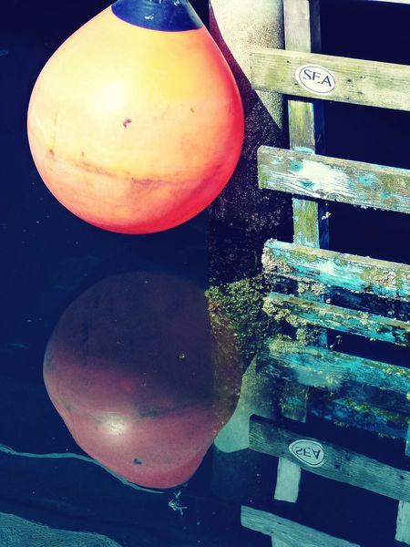 High Angle View Close-up Sphere Freshness No People Multi Colored Fender Bumper Ladder Water Water Reflections Waterfront Pilings Dock Orange Color Rubber Ball Barnacles Encrusted