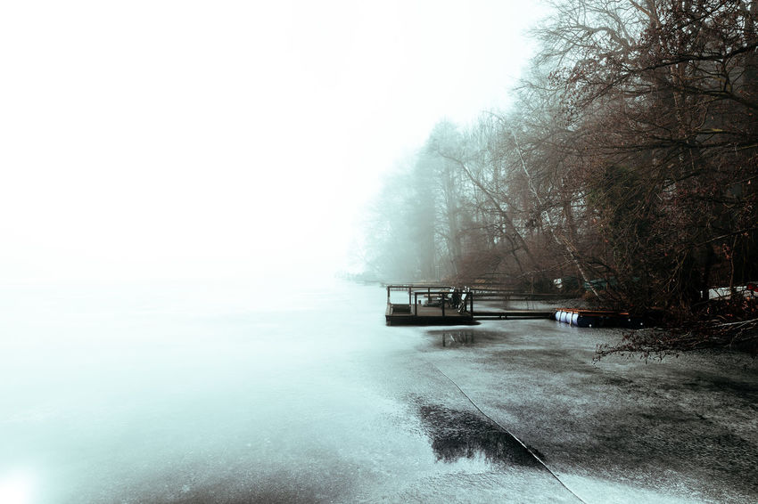 Amazing fog at lake Beauty In Nature Cold Temperature Day Daylight Fog Foggy Day Iced Lake Lake View Landscape Mode Of Transport Nature Nature Nautical Vessel No People Outdoors Scenics Sky Snow Stage Transportation Tree Water Weather Winter