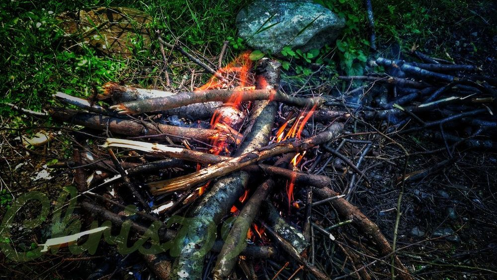Making of barbecue fire...Outdoors Day No People Nature Tree Close-up Travel Photography Barbecue Fire Fire Maker Tree Branches Tree Green Color Tranquility Eating Out Craft