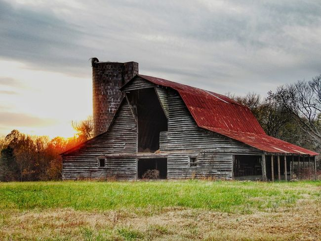 Built Structure Architecture No People Building Exterior Abandoned Barn Old Wood Run-down Abandoned Piedmont Region Of NC Barnaholics Barn Barn And Sky Rural Scene Farm Life Farmlife Country Scene Farm Evening Sky