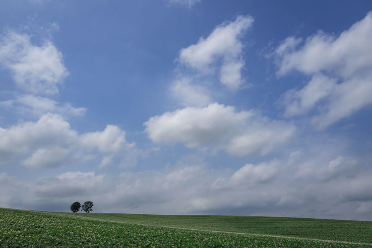 Cloud - Sky Sky Land Field Landscape Plant Nature Tranquility Scenics - Nature Day Agriculture Outdoors Tranquil Scene Trees Cloudy Cloudy Day
