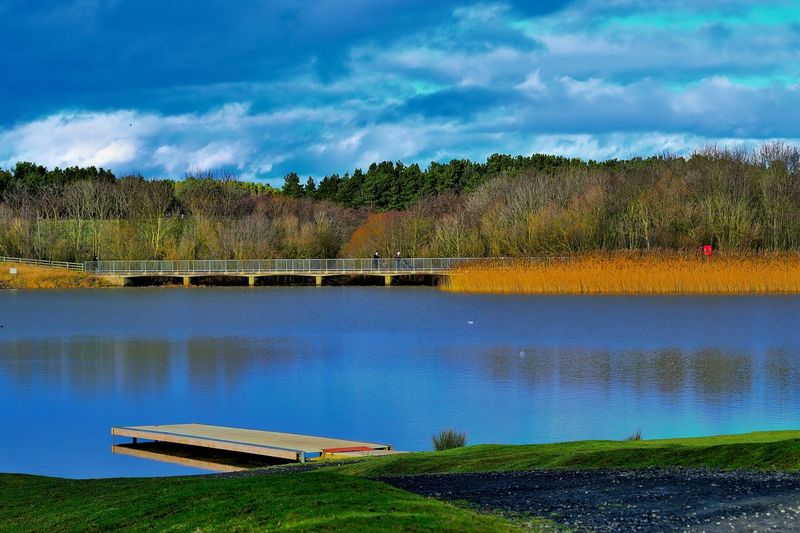 Architecture Beauty In Nature Beauty In Nature Bridge Built Structure Cloud - Sky Clouds And Sky Day Grass Lake Landscape Nature No People Outdoors Reflection Reflections In The Water Scenics Sky Tranquility Tree Water Water Bird Winter