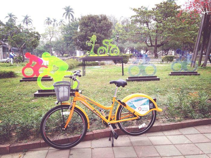 Bike Life 你好,這是PBike