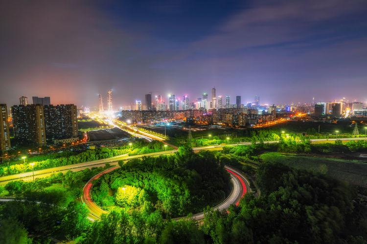 Trees against sky in illuminated city at night