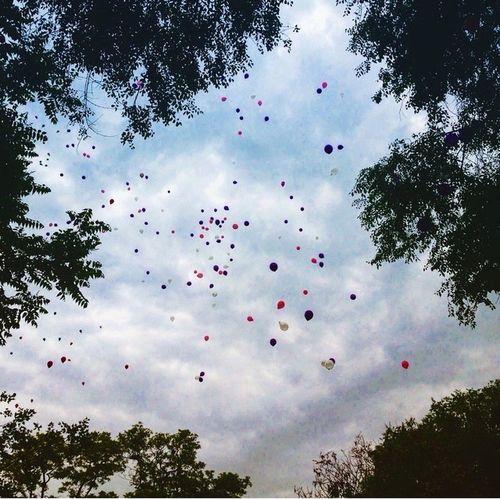 Sky Eyemphotography EyeEm 婚礼现场放飞的气球和天空融为一体🎈