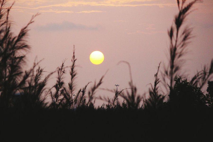 Sunset cloud n sky