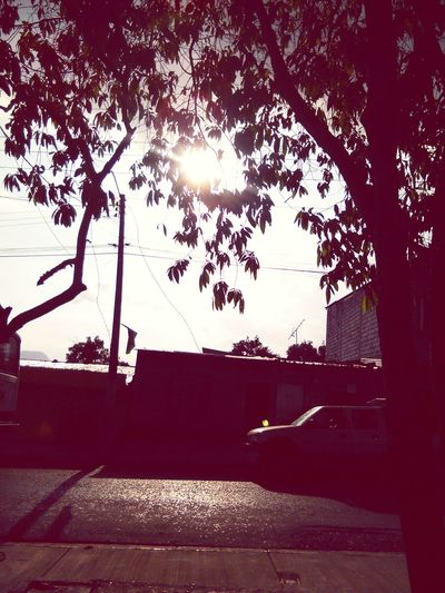 Lluvia Sol