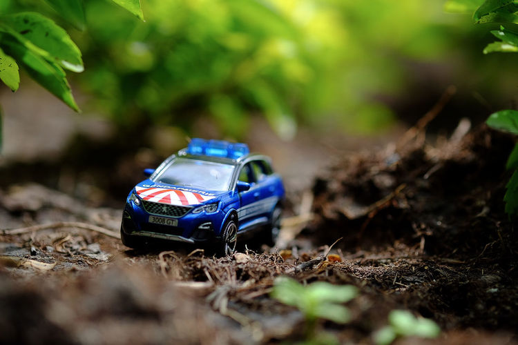 Fujifilm_xseries Model Car Toy Car Collection Collection Diecast Diecastphotography Forced Perspective MAJORETTE Police Car Product Photography Plant Toy Car Vehicle Dirt Road Off-road Vehicle Sports Utility Vehicle Farmland Countryside Toy 4x4 Tire Track Arid Landscape Empty Road Mud Hiker Muddy