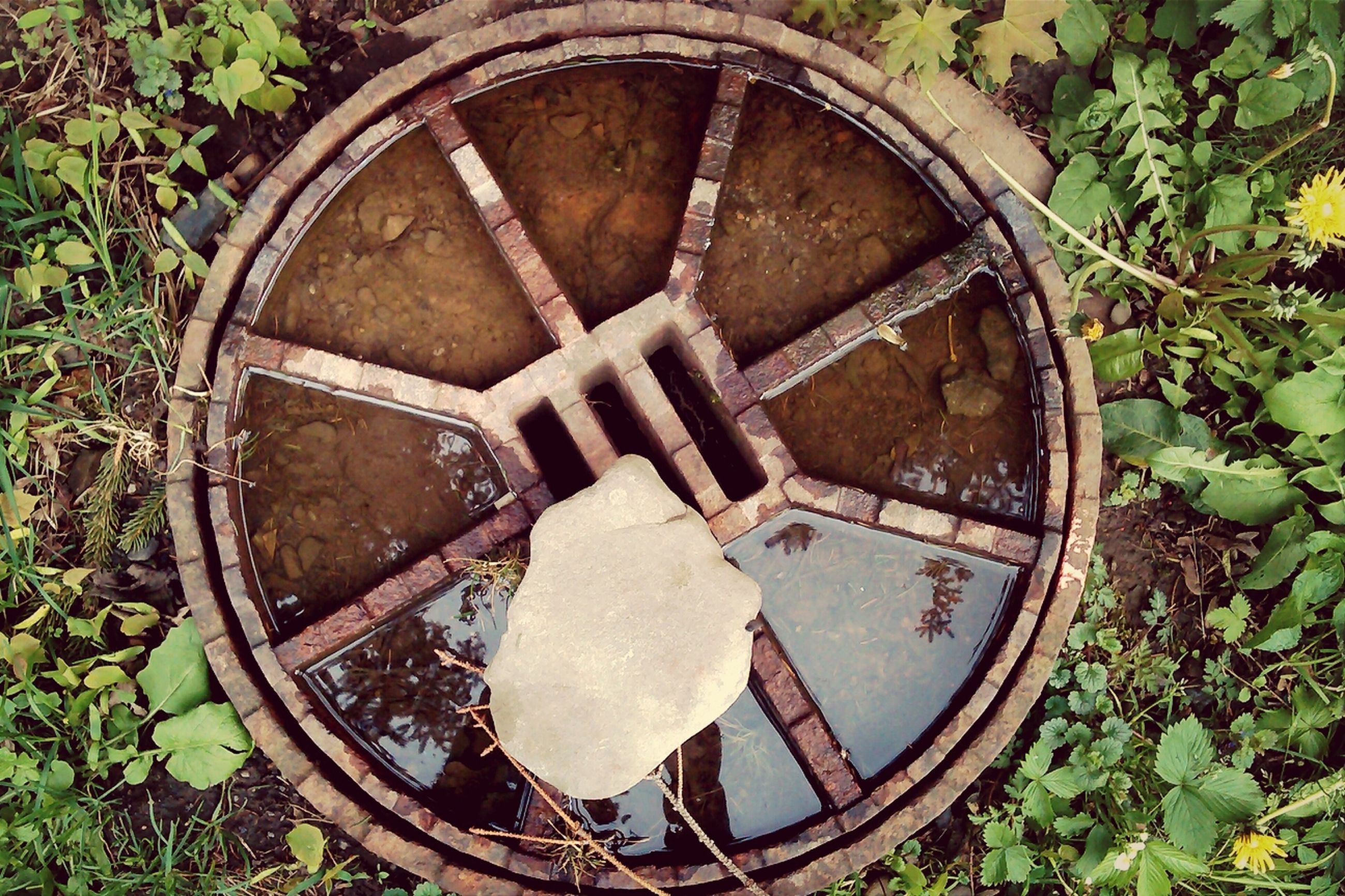 abandoned, circle, old, grass, obsolete, high angle view, plant, damaged, rusty, deterioration, leaf, geometric shape, metal, run-down, wheel, day, field, directly above, outdoors, weathered